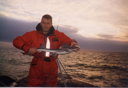 Hammer with a Smoothhound