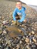 A rare Stingray landed from llanbedrog beach.